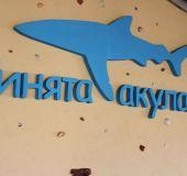 House Blue Shark