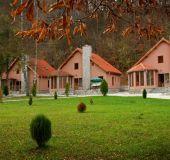 Hotel Green Village