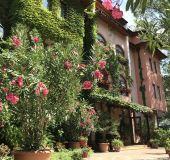 Hotel Oleander House