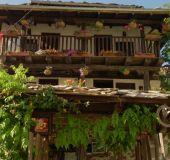 House Pavlov's house