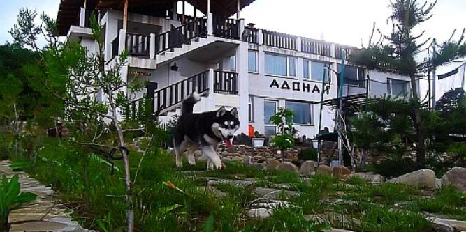Семеен хотел Адонай