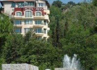 Хотел Авис