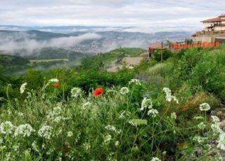 Хотел Болярско село