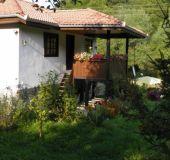 House The Klisarov's house