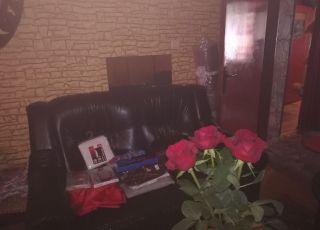 Стая в Стрелбище