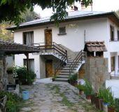 House Villa Dani