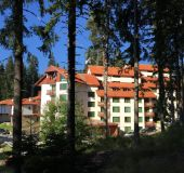 Hotel Forest Glade