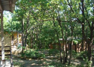 Бунгало в комплекс Дъбрава