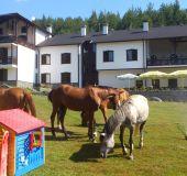 Family hotel Rusaliite