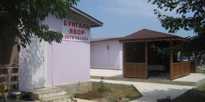 Бунгало Явор