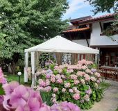 House Villa Bela