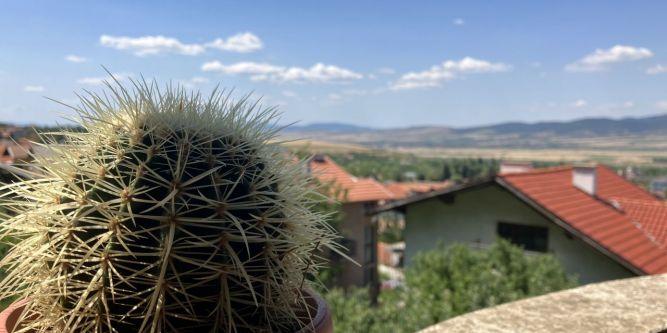 Къща - апартамент Александър