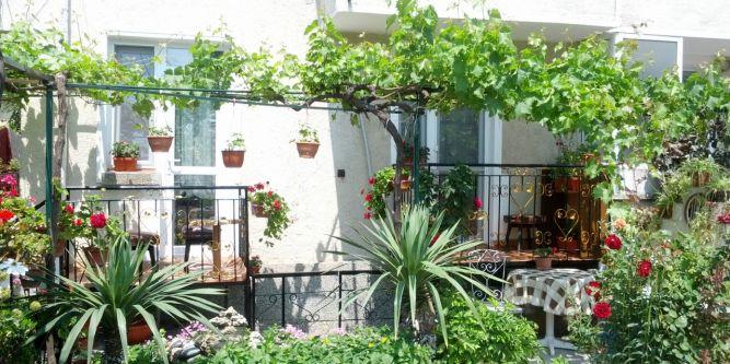 Квартира в къща Борисови