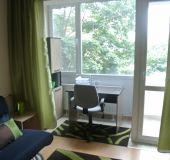 Apartment - studio