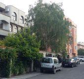 House Dvete brezi 1