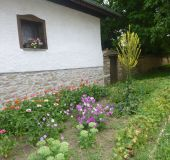 House Morava