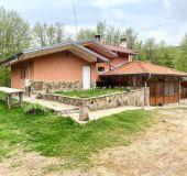 House Montemno