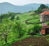 House Gargini houses