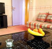 Apartment Mansard Marina