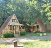 Bungalow Forest Story