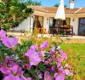 House Guest House Oasis-Shabla