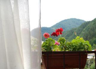 Семеен хотел Флора