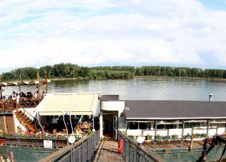 Дунав, Видин