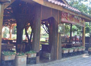 Central Park - Градска градина, Пловдив