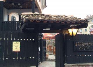 Български корен, Плевен