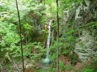 Сливодолско падало (водопад)