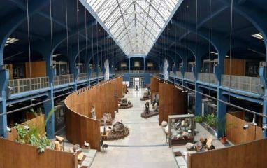 Музей Земята и хората