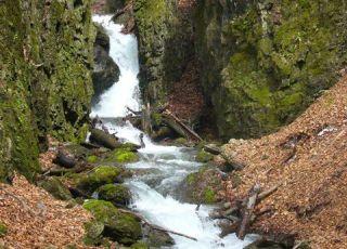 Сувчарско пръскало (водопад)