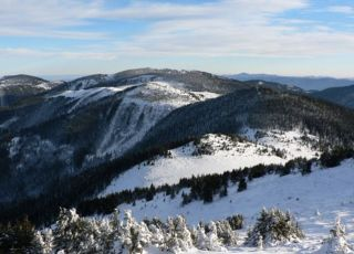 Голям Перелик (връх)
