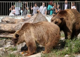 Зоопарк Варна 2