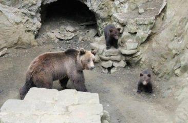 Зоопарк Айтос