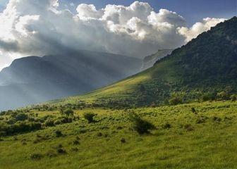 Централен Балкан (национален парк)