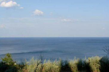 Плаж Балтата