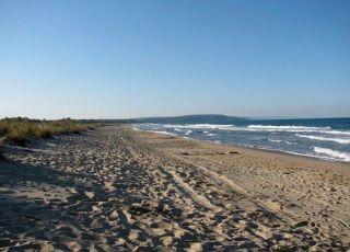 Камчийски пясъци (плаж)