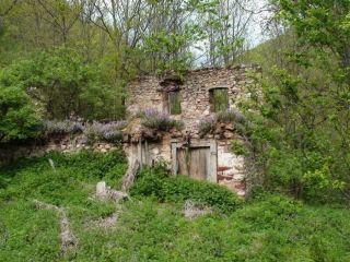 Велиновски манастир Св. Богородица