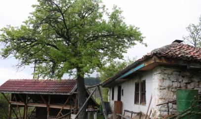 Голешки манастир Свети Николай Летни