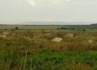 Девташлари - Плиска и с. Златна Нива