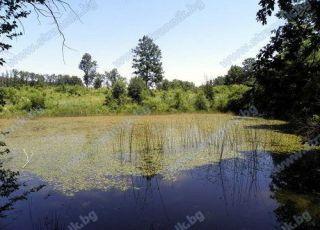 Езеро Драганчева бара - Деветаки