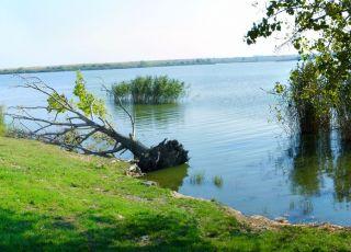 Защитена местност Дуранкулашко езеро