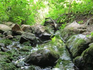 Извор Водна пещ