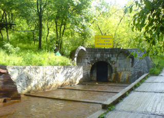 Желязна вода (минерален извор)