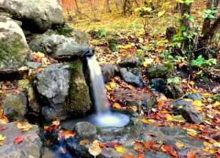 Извор Живата вода