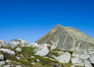 Момин Двор (връх)