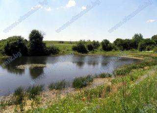 Езеро Рашекова бара