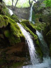 Бачковски водопад