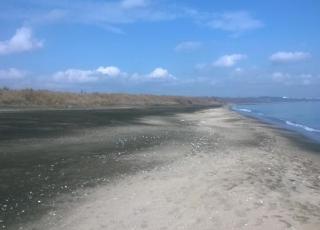Плаж Солниците